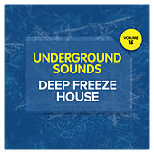Deep Freeze House - Underground Sounds, Vol. 15 by Various Artists
