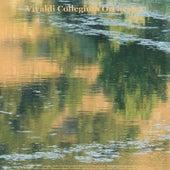 Vivaldi: Oboe Concerto, Violin Concertos, Guitar Concerto & Cello Concerto - Pachelbel: Canon in D Major - Bach: Air On the G String & Violin Concerto - Albinoni: Adagio in G Minor - Walter Rinaldi: Guitar Works and Piano Works - Beethoven: Fur Elise by Various Artists