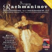 Rachmaninoff: Trio elegiaque Nos. 1 & 2 by St. Petersburg Academy Trio