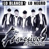 Lo Blanco y Lo Negro by Agresivos De La Sierra