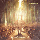 Different from the Rest - EP by In Flagranti