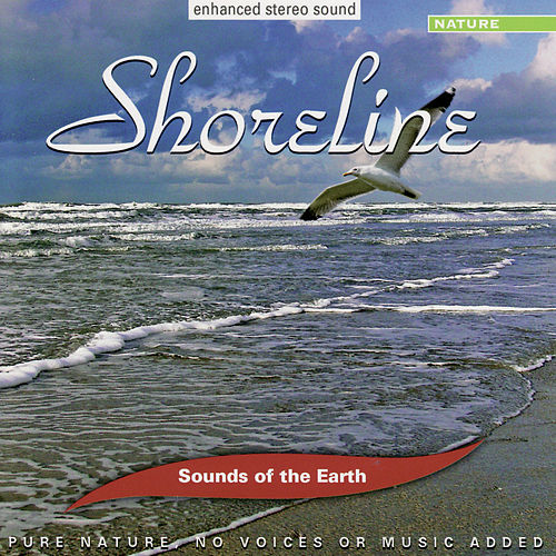 Shoreline by Sounds Of The Earth