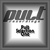 Pult Selection One by Various Artists