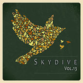 Skydive, Vol. 13 by Various Artists