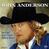 You Can't Keep A Good Memory Down by John Anderson