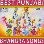 Best Punjabi Bhangra Songs, Vol.1 by Various Artists