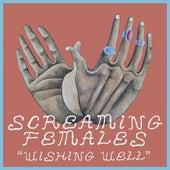 Wishing Well - Single by Screaming Females
