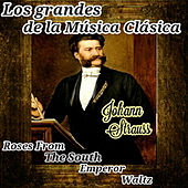 Johann Strauss, Los Grandes de la Música Clásica by Various Artists