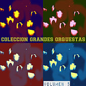 Colección Grandes Orquestas Vol. 5 by Various Artists