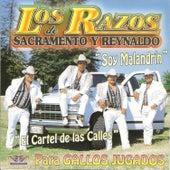Soy Malandrin by Los Razos