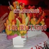 Extraordinarios Vol. 3 by Los Iracundos