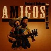 Amigos - Richard Dobson Sings Townes Van Zandt by Richard Dobson