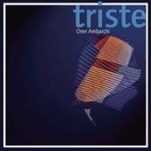Triste by Oren Ambarchi