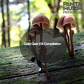 Gold Gaia VA Compilation by Various Artists