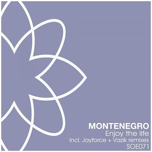 Enjoy The Life by Monte Negro