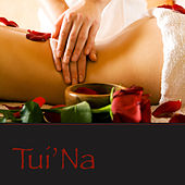 Tui'Na - Relaxing Soft Spa Music for Tui'Na Massage & Spa Treatments by Pure Massage Music