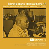 Blues At Home 12 by Hammie Nixon