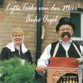 Lijtse Teake van der Meer, Auke Orgel by Various Artists