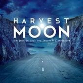 Harvest Moon - The Best in Rock Pop Grunge & Alternative by Various Artists