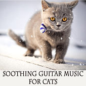 Soothing Guitar Music for Cats by The O'Neill Brothers Group