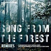 Song from the Forest (Remixes) by Various Artists