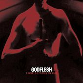 A World Lit Only by Fire von Godflesh