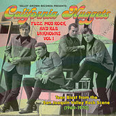 California Nuggets: Fuzz, Mod Rock, and R & B Unknowns, Vol. 1 (1960 - 1970) by Various Artists