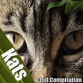 Kats (Chill Compilation) by Various Artists