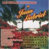 Las Bellas Canciones de Juan Gabriel by Various Artists