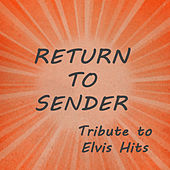 Return to Sender: Tribute to Elvis Hits by The O'Neill Brothers Group