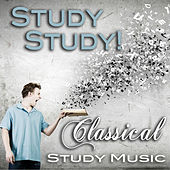 Study Study! Classical study music by Various Artists