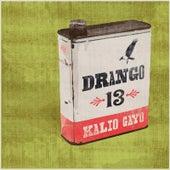 Drango 13 by Kalio Gayo