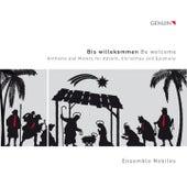 Bis willekommen by Ensemble Nobiles