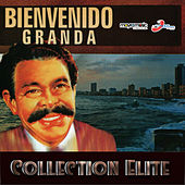 Collection Elite by Bienvenido Granda