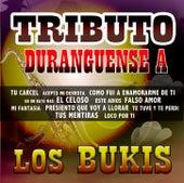 Tributo Duranguense by Los Bukis