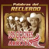 Palabras Del Recuerdo by Los Ciclones del Arroyo