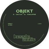 Cactus / Porcupine by Objekt