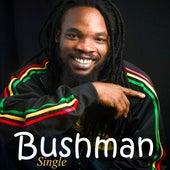 Lovers of Men (Remaster) by Bushman
