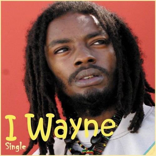 Sweet Collie by I Wayne