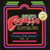 Cosa del Amor, Vol. 16 by Grupo Pegasso