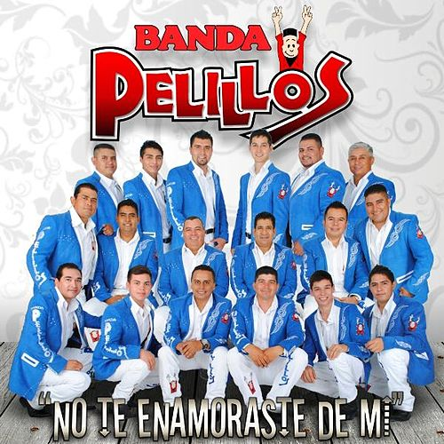 No Te Enamoraste De MI by Banda Pelillos