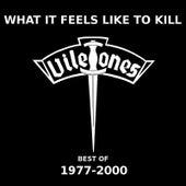 What It Feels Like to Kill by The Viletones