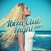 Ibiza Club Night 2014 by Various Artists