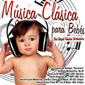 Música Clásica para Bebés by The Royal Classic Orchestra