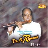 Dr. N. Ramani - Flute, Vol. 6 by Kannan