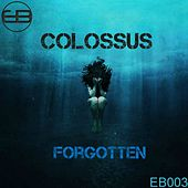 Forgotten by Colossus