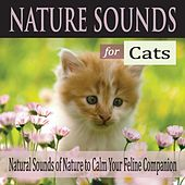 Nature Sounds for Cats: Natural Sounds of Nature to Calm Your Feline Companion by Robbins Island Music Group