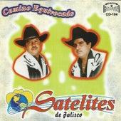 Camino Equivocado by Los Satelites