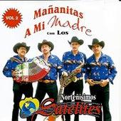 Mañanitas a Mi Madre, Vol. 2 by Los Satelites