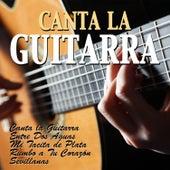 Canta la Guitarra by Various Artists